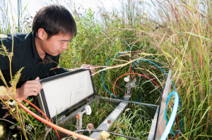 Scientist Leilei collecting samples of gasses released by the growing of biofuels