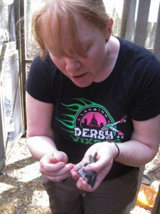 Danielle removing preen oil from a junco.
