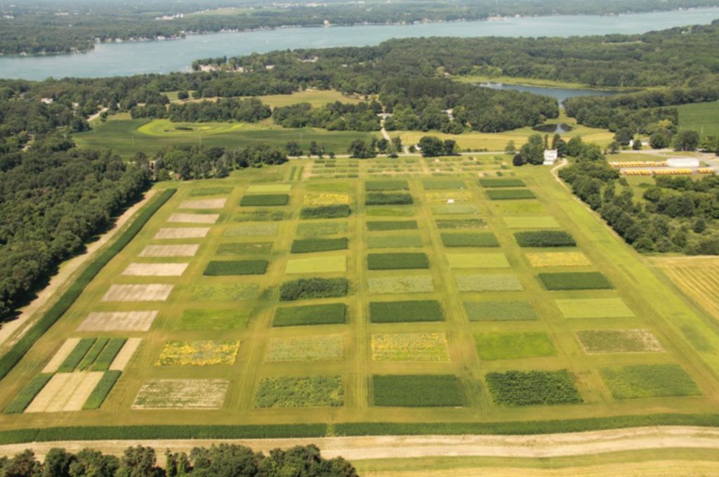 Aerial view of GLBRC KBS LTER cellulosic biofuels research experiment; Photo Credit: KBS LTER, Michigan State University