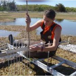 "Researcher Sam Bond taking Sediment Elevation Table measurements in Plum Island Ecosystems Long Term Ecological Research site. For more information on this research, check out Anne Giblin's Data Nugget, ""Keeping Up With the Sea Level""."