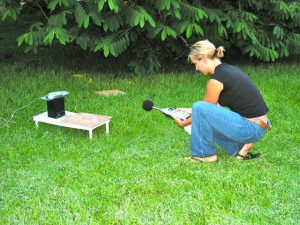 Robin collecting data on satellite behavior in normal and flatwing mutation males.