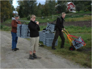 Doug, and two members of his team, setting up the reciprocal transplant experiment in Scandinavia.