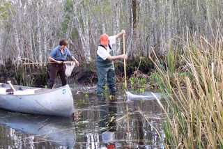 Becky in the field, with her colleague Katy, collecting fish in 26 Mile Bend Swamp.